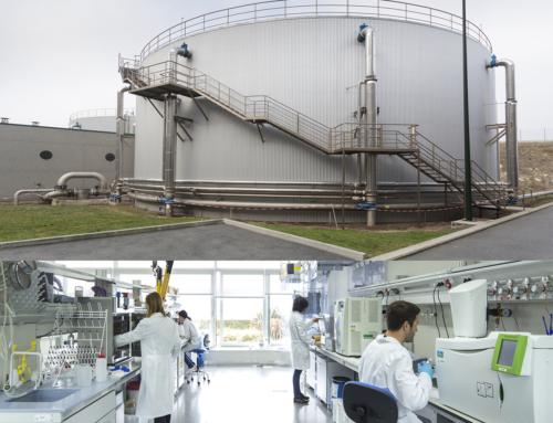 Unidad Mixta de Gas Renovable